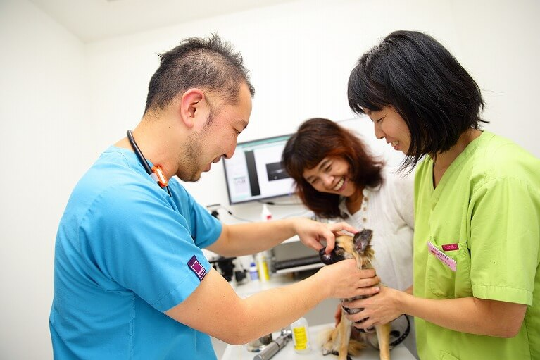 キーステーションとして各科専門医のご紹介も行います。