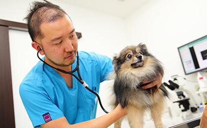 飼い主様とともに最良の選択をしていく地域のホームドクター